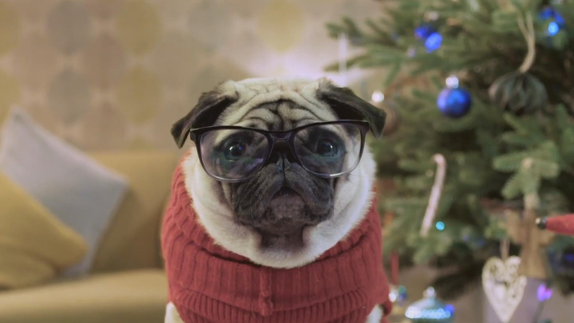 Chi salverà il Natale? Arriva il nuovo spot natalizio di Vision Direct