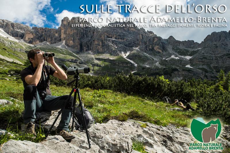 Trekking fotografci fotografare in montagna for Cabina di montagna grande orso